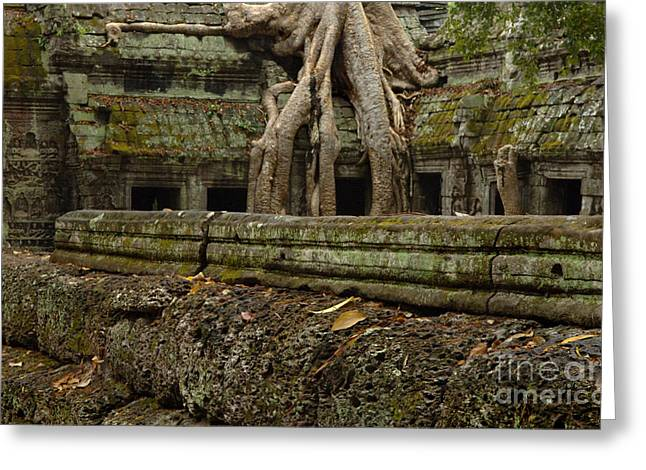 Traveling In Cambodia Greeting Cards - Ta Prohm Cambodia 5 Greeting Card by Bob Christopher