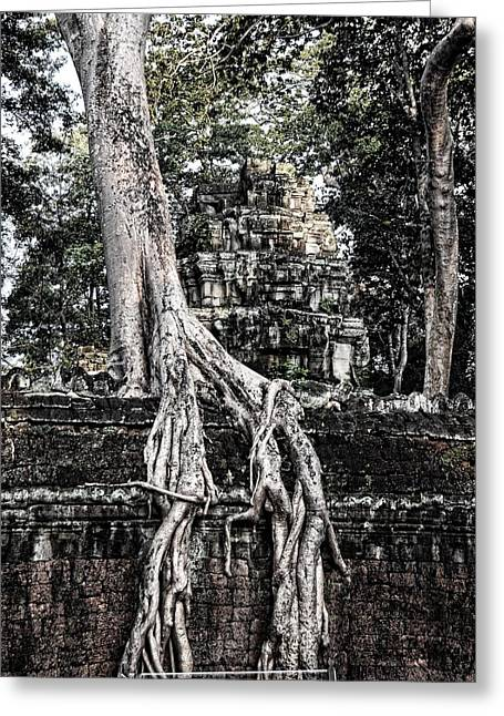 Take Over Greeting Cards - Ta Prohm Greeting Card by Helen Worley