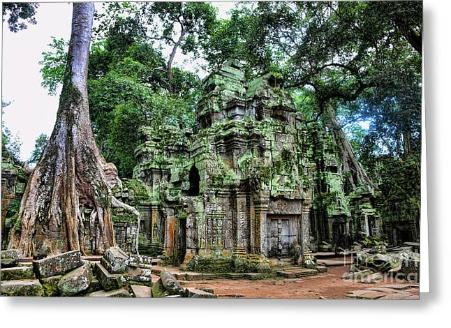 Tree Roots Greeting Cards - Ta Prohm IV Greeting Card by Chuck Kuhn