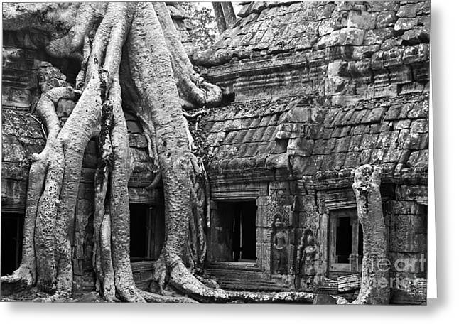 Tree Roots Greeting Cards - Ta Prohm Roots And Stone 01 Greeting Card by Rick Piper Photography