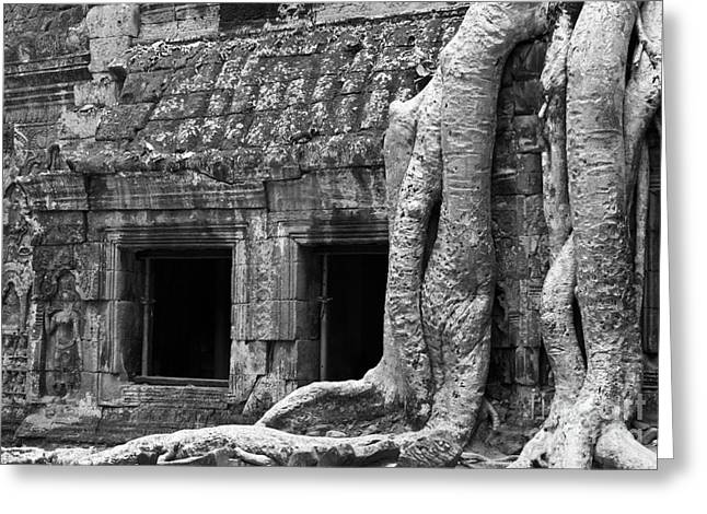 Tree Roots Greeting Cards - Ta Prohm Roots And Stone 02 Greeting Card by Rick Piper Photography