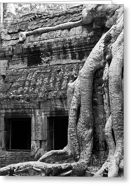 Tree Roots Greeting Cards - Ta Prohm Roots And Stone 05 Greeting Card by Rick Piper Photography