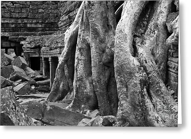 Tree Roots Greeting Cards - Ta Prohm Roots And Stone 14 Greeting Card by Rick Piper Photography