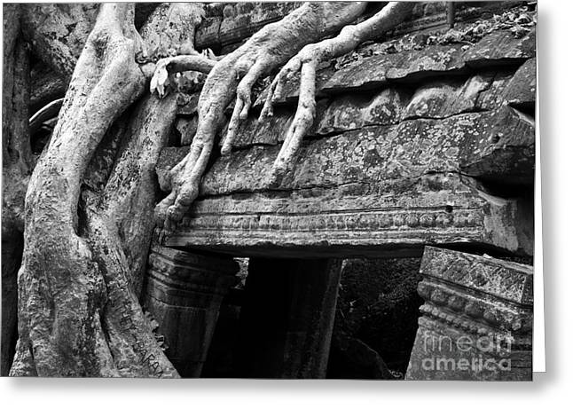 Tree Roots Greeting Cards - Ta Prohm Roots And Stone 15 Greeting Card by Rick Piper Photography