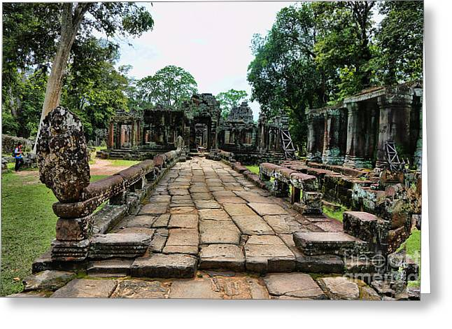 Tree Roots Greeting Cards - Ta Prohm Ruins Greeting Card by Chuck Kuhn