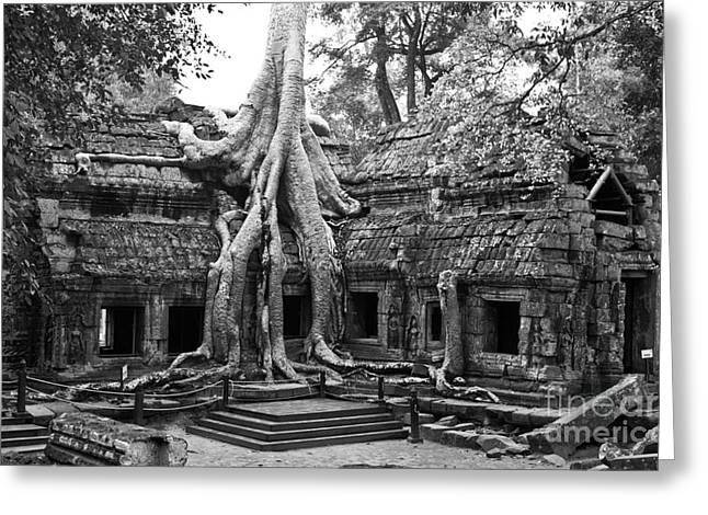 Tree Roots Photographs Greeting Cards - Ta Prohm Temple 01 Greeting Card by Rick Piper Photography