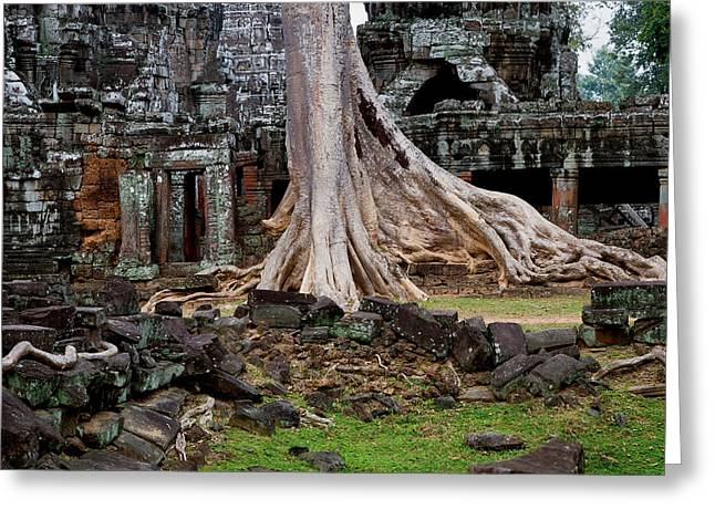 Wat Angkor Greeting Cards - Ta Prohm Temple Ruins Greeting Card by Artur Bogacki