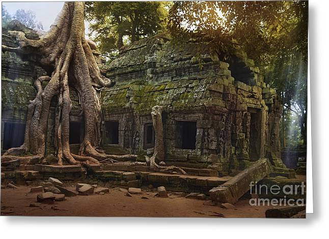 Temple Of Ta Prohm Greeting Cards - Ta Prohm Temple Greeting Card by Istvan  Kadar