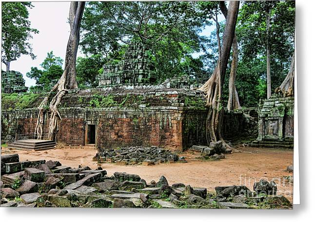Tree Roots Greeting Cards - Ta Prohm V Greeting Card by Chuck Kuhn