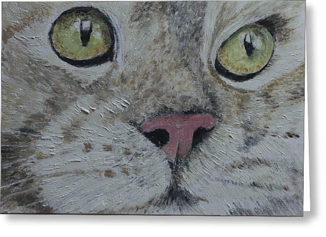 John Schuller Greeting Cards - Tabby Cat  Greeting Card by John Schuller