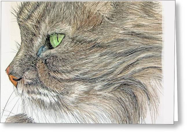 Mary Mayes Greeting Cards - Tabby Cat Greeting Card by Mary Mayes