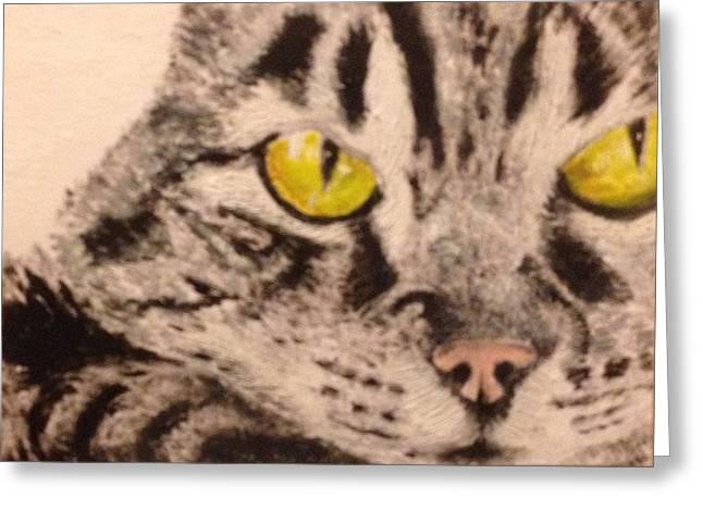 John Schuller Greeting Cards - Tabby Close-up Greeting Card by John Schuller