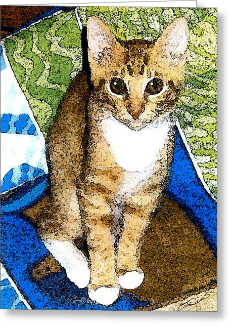 Kitten Prints Mixed Media Greeting Cards - Tabby In Quilts Greeting Card by Elia Peters