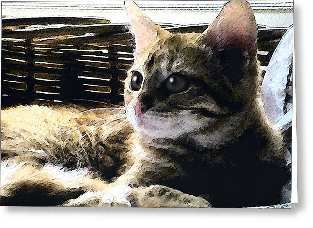 Kitten Prints Mixed Media Greeting Cards - Tabby In Wicker Greeting Card by Elia Peters