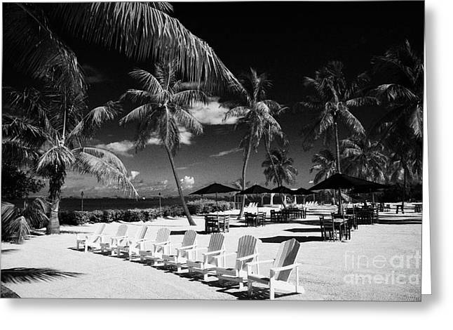 Downturn Greeting Cards - Tables Sun Recliners And Private Beach Surrounded By Palm Trees Islamorada Florida Keys Usa Greeting Card by Joe Fox