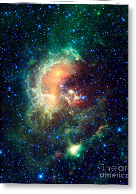 Nasa Space Program Greeting Cards - Tadpole Nebula Greeting Card by Science Source
