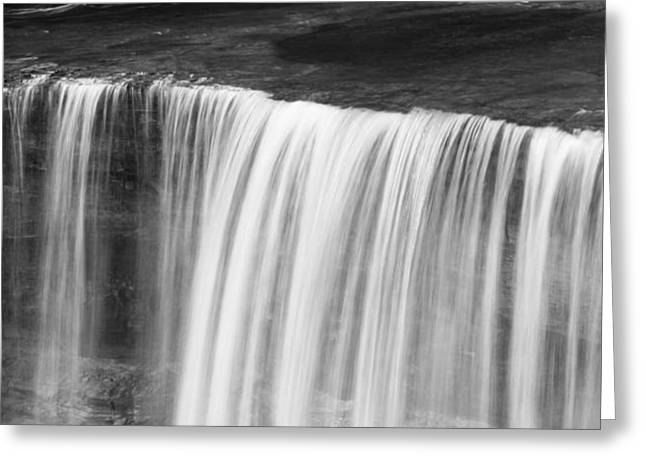 The Great Lakes Greeting Cards - Tahquamenon Black And White Greeting Card by Dan Sproul