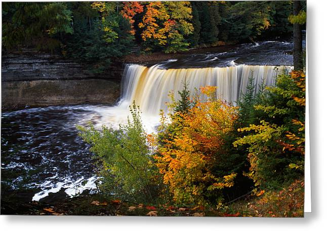 Transitions Greeting Cards - Tahquamenon Falls, Autumn Color Forest Greeting Card by Panoramic Images