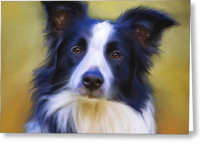 Pet Greeting Cards - Beautiful Border Collie Portrait Greeting Card by Michelle Wrighton