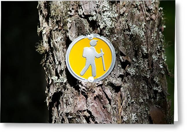 Take A Hike Greeting Card by Allan Morrison