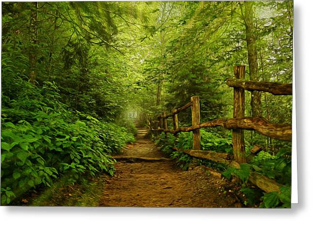 Gatlinburg Tennessee Greeting Cards - Take a Hike Greeting Card by Stephen Stookey