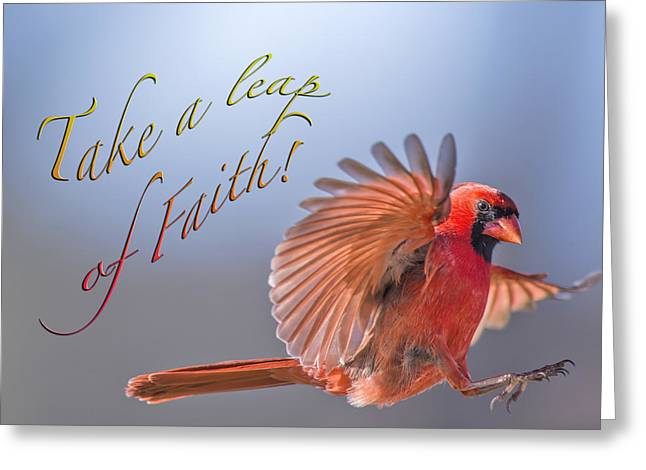 Male Northern Cardinal Greeting Cards - Take a Leap of Faith Greeting Card by Bonnie Barry