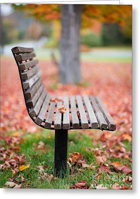 New Hampshire Leaves Greeting Cards - Take a seat Greeting Card by Edward Fielding