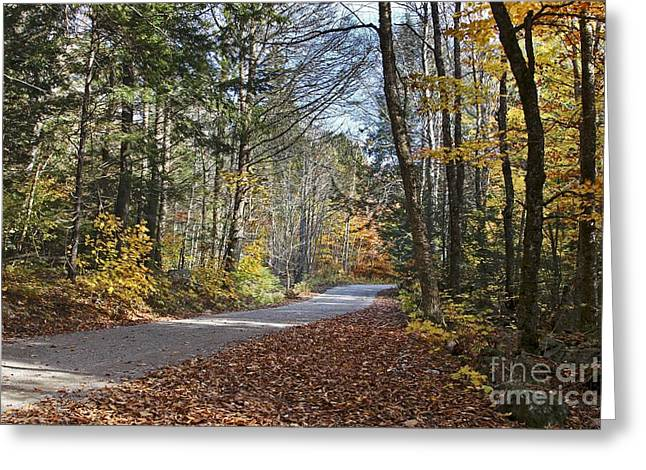 Rural Maine Roads Photographs Greeting Cards - Take A Walk Greeting Card by Karin Pinkham