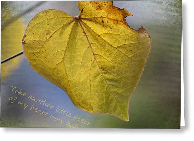 Cercis Greeting Cards - Take another little piece of my heart Greeting Card by Linda Lees