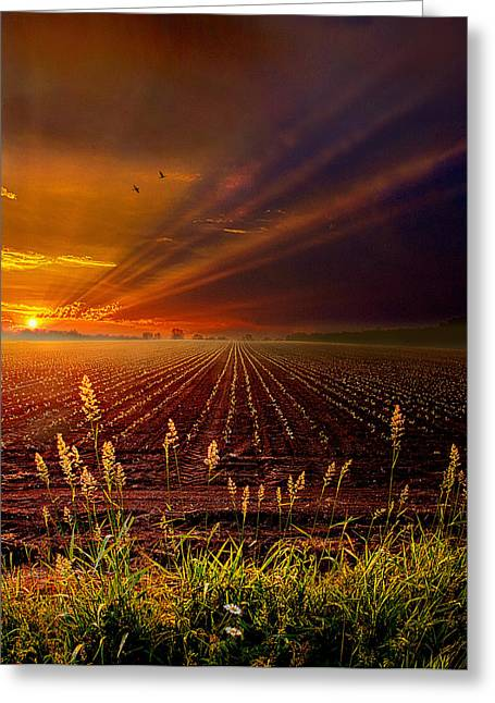 Geographic Greeting Cards - Take It To The Limit Greeting Card by Phil Koch