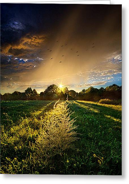 Rain Season Greeting Cards - Take Me Farther Greeting Card by Phil Koch