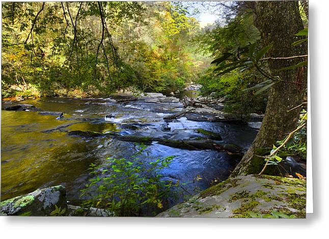 Take me to the River Greeting Card by Debra and Dave Vanderlaan