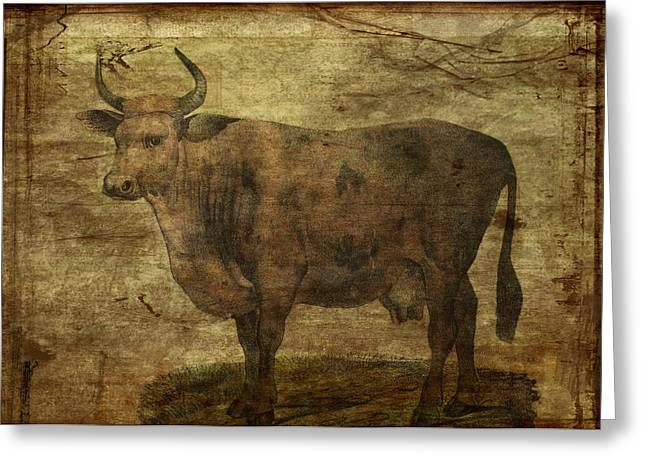 Take The Cow By The Horns Greeting Card by Sarah Vernon