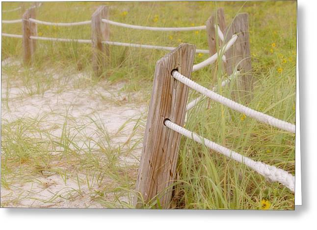 Sand Fences Photographs Greeting Cards - Take the Gentle Path Greeting Card by Kim Hojnacki