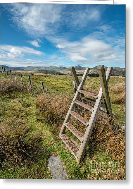 Step Ladder Greeting Cards - Take The Path Greeting Card by Adrian Evans