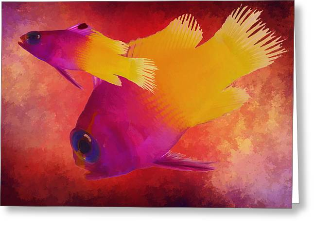 Aquarium Fish Greeting Cards - Take The Plunge Greeting Card by Kandy Hurley