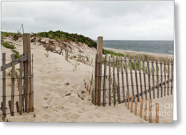 Beach Roses Greeting Cards - Take Time To Go Within Greeting Card by Michelle Wiarda