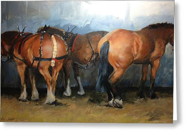 Show Horse Greeting Cards - Taking a Break  Chertsey Show Greeting Card by Jennifer Wright