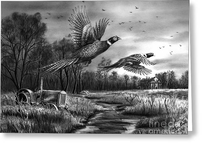 Old Barns Drawings Greeting Cards - Taking Flight  Greeting Card by Peter Piatt