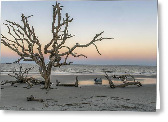 Ocean Images Greeting Cards - Taking It All In At Driftwood Beach During Sunset On Jekyll Island Georgia Greeting Card by Willie Harper