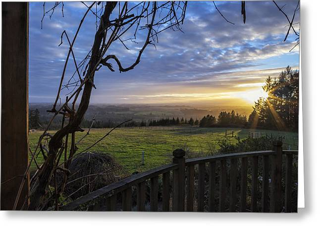 Blue Grapes Photographs Greeting Cards - Taking it In Greeting Card by Belinda Greb