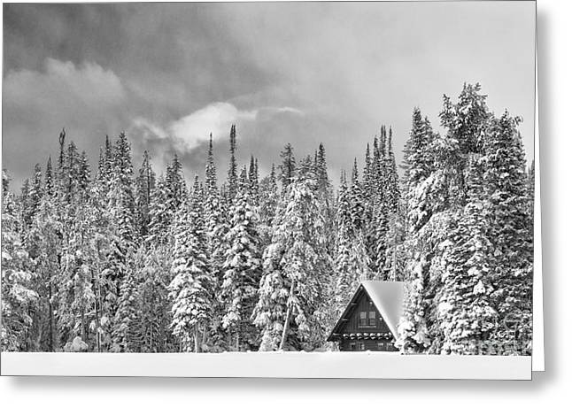 Snow-covered Landscape Photographs Greeting Cards - Taking Refuge - Grand Teton Greeting Card by Sandra Bronstein