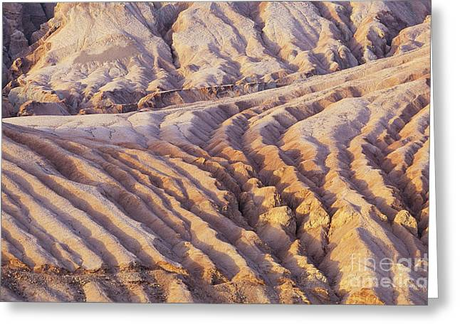 Rill Greeting Cards - Taklimakan Desert Greeting Card by Art Wolfe