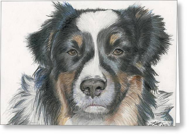 Bred Drawings Greeting Cards - Takoda Greeting Card by Laurie Scott