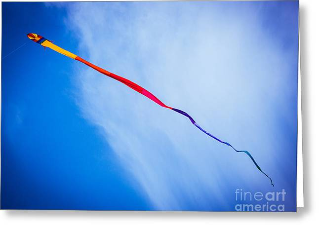 Kites Festival Greeting Cards - Tale of a Kite Greeting Card by Sonja Quintero