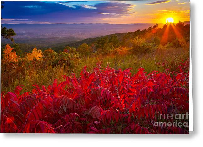 Oklahoma Greeting Cards - Talimena Evening Greeting Card by Inge Johnsson