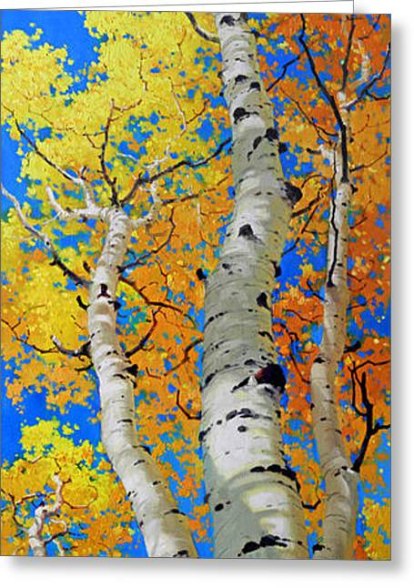 Fall Aspens Greeting Cards - Tall Aspen Trees Greeting Card by Gary Kim