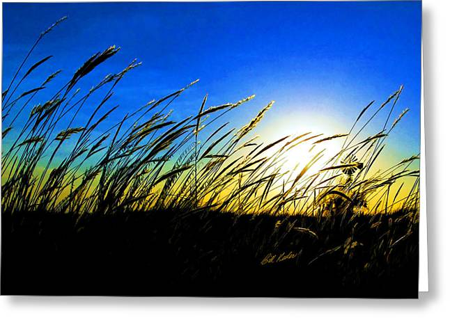 Bill Kesler Greeting Cards - Tall Grass Greeting Card by Bill Kesler