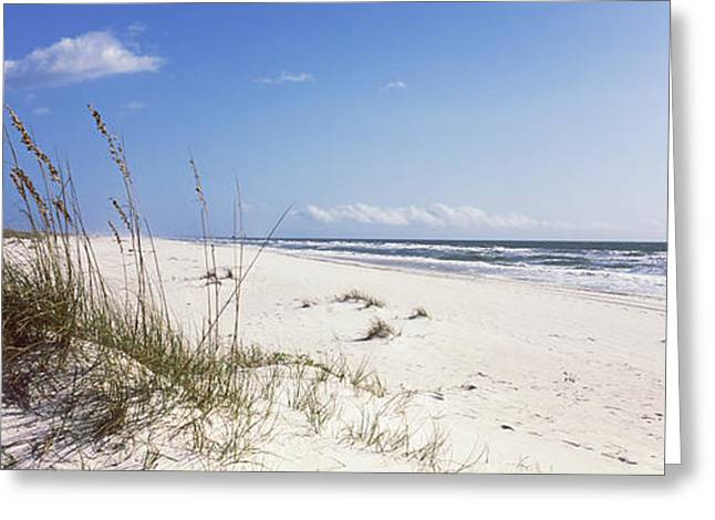 Panoramic Ocean Greeting Cards - Tall Grass On The Beach, Perdido Key Greeting Card by Panoramic Images