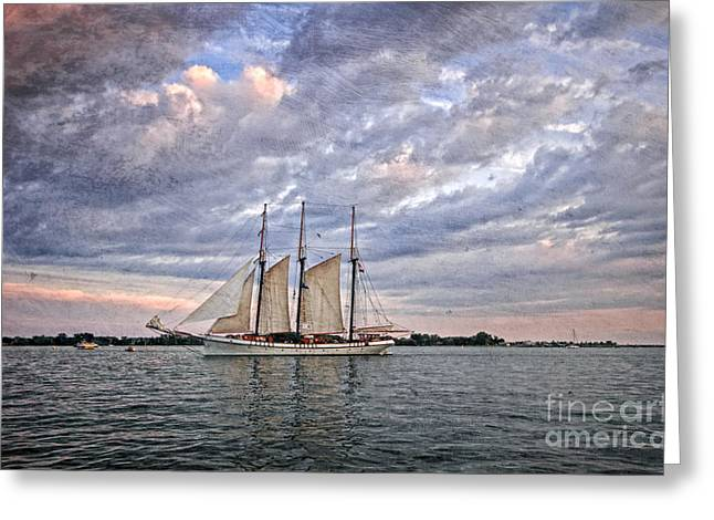 Tall Ships Greeting Cards - Tall Ship at Dusk Greeting Card by Charline Xia